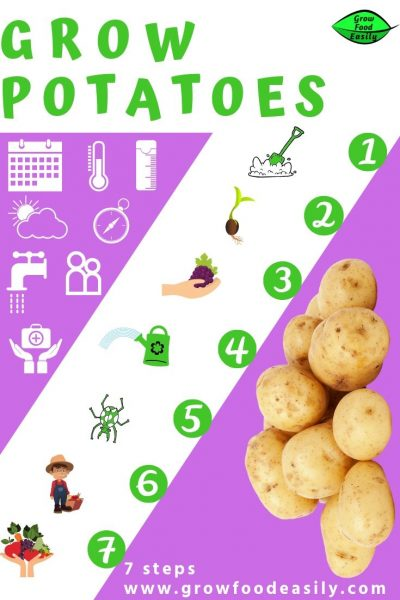 easy way to grow potatoes e1567366032617