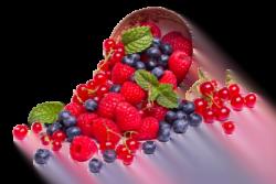 fruit to grow in garden e1567366567437