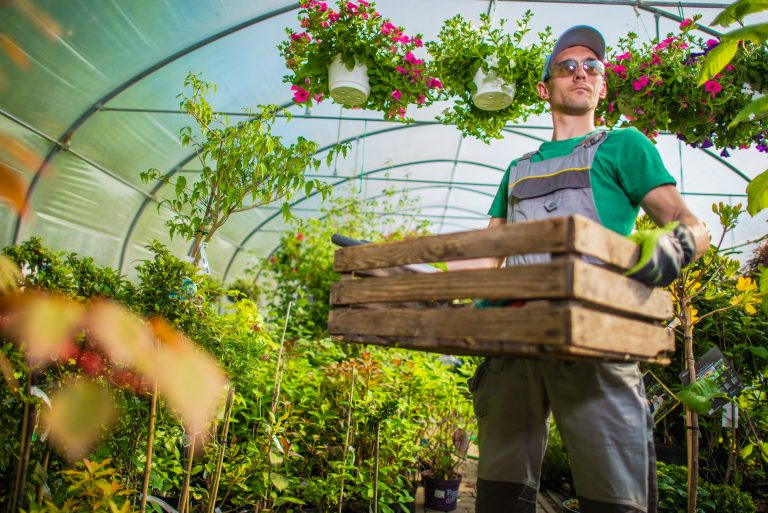 gardener in greenhouse polytunnel e1567283056787
