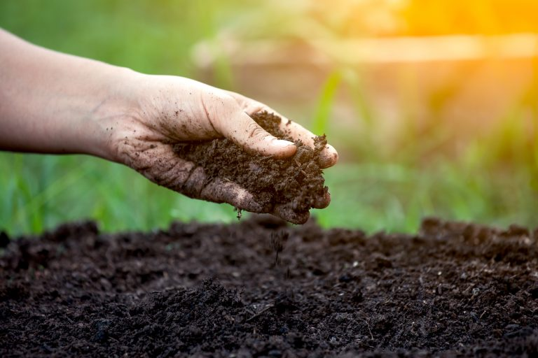 Soil quality e1567282913813