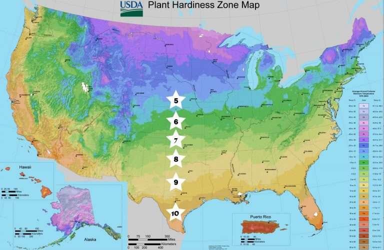 planting zones america