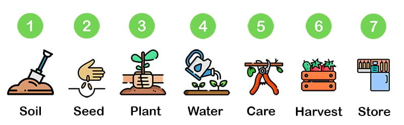 7 steps to growing 2
