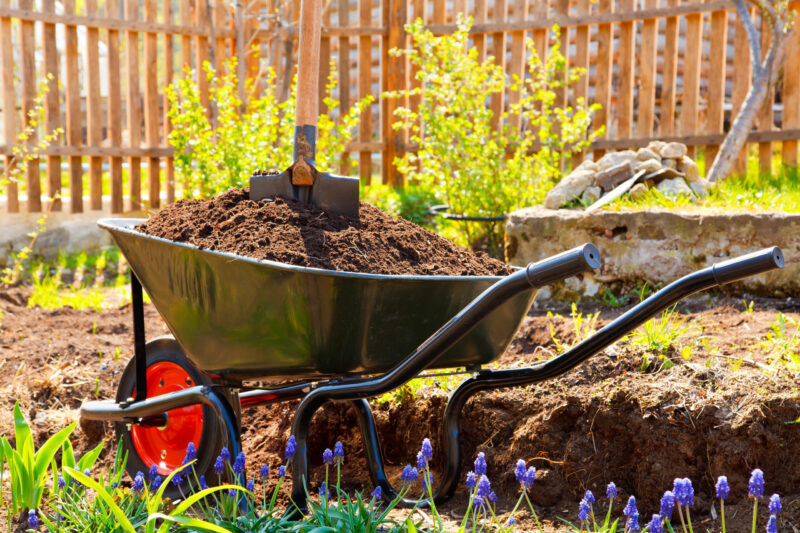 What do you look for in a wheelbarrow? 1